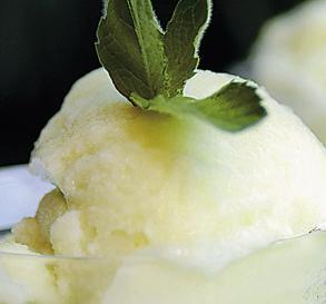 Sorbete de melón con un toque de miel
